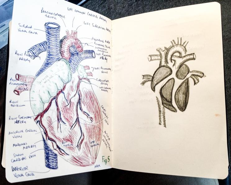 Sketchbook pp. 3-4