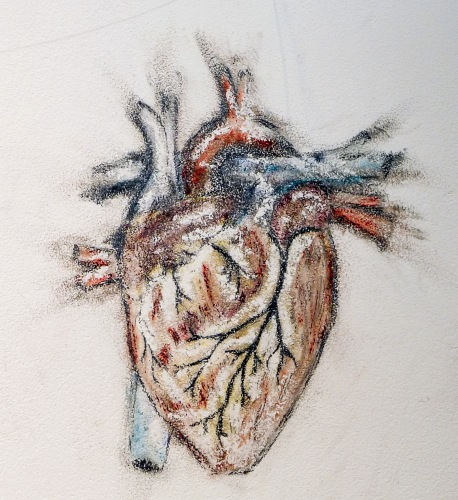 Close up of my heart drawing, pencil and soft pastel